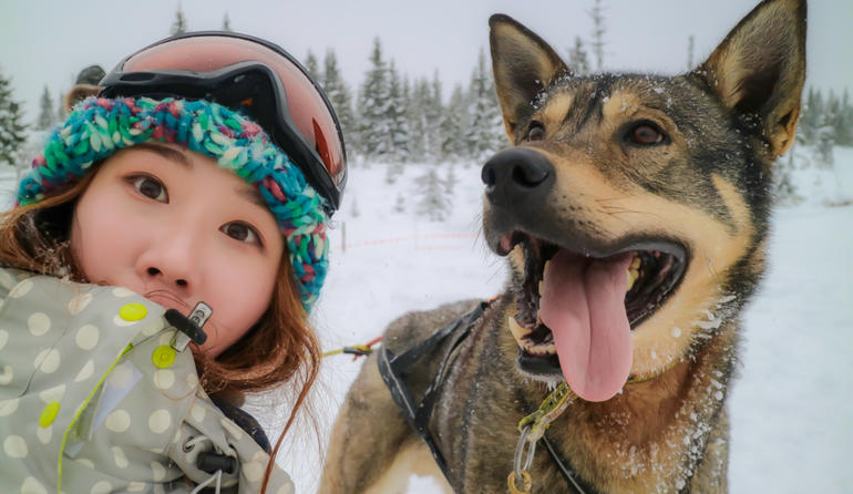 Exchange student posing with a dog during winter, in an Husky Tour event. Dressed warmly in the snow.