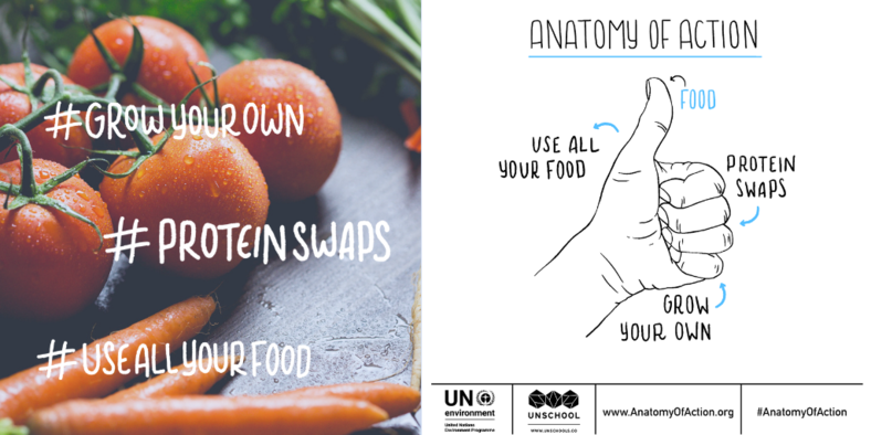 Anatomy of Action Challenge for sustainable living