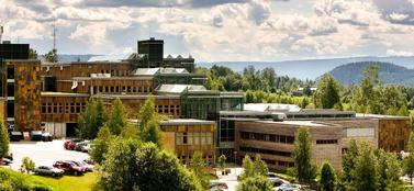 Campus Lillehammer summer